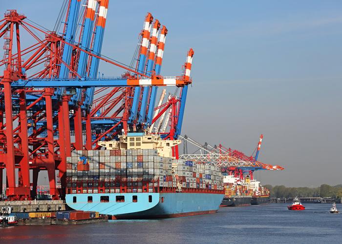 Hamburg Port, Lagergebäude